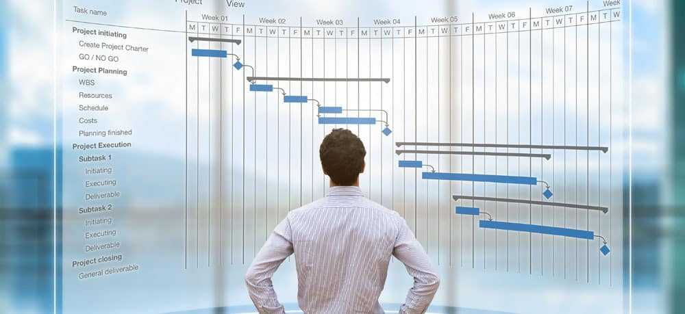 Businessman Looking at Gantt Chart